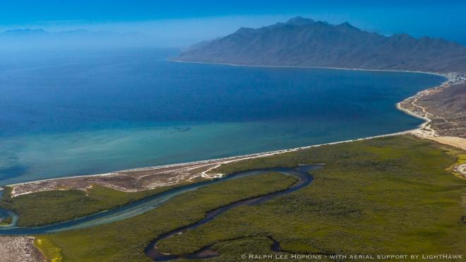 Bahía Magdalena ofrece un hábitat único para  mamíferos marinos.