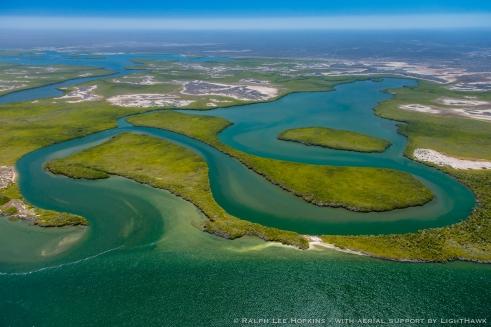 Mangrove Wetlands, Tidal Channels, Magdalena Bay, Baja California, Mexico