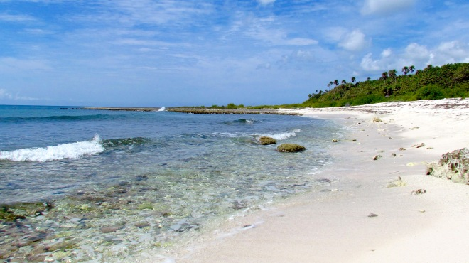 Playa anidación tortugas-Foto Eduardo