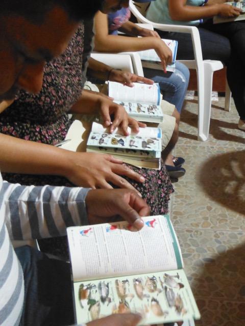 Participantes del taller exploran las guías de identificación de aves.